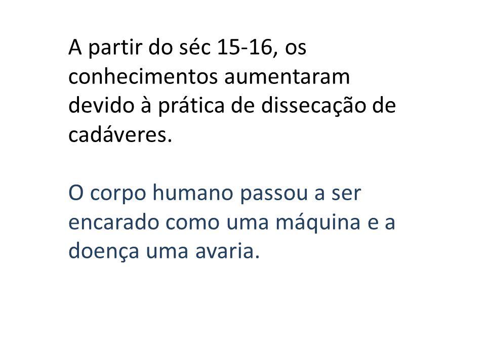 A partir do séc 15-16, os conhecimentos aumentaram devido à prática de dissecação de cadáveres.