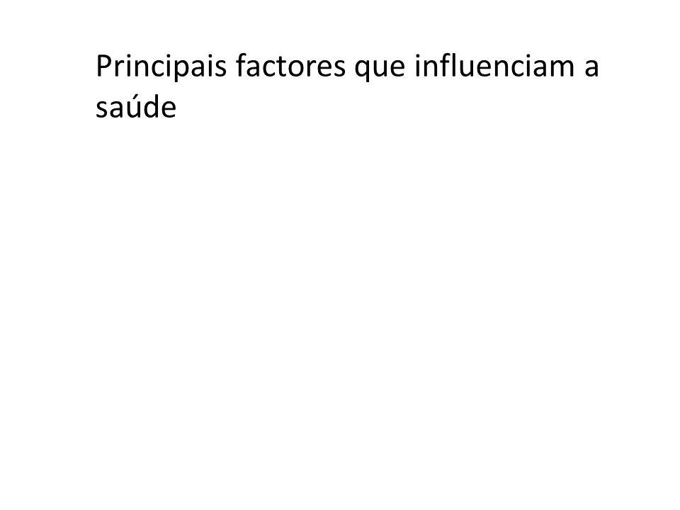 Principais factores que influenciam a saúde