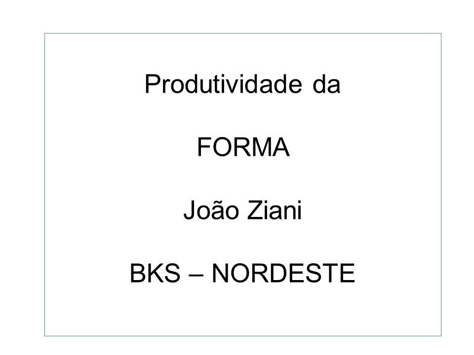 Produtividade da FORMA João Ziani BKS – NORDESTE