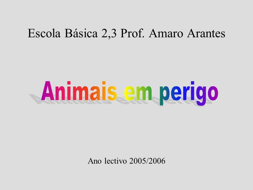 Escola Básica 2,3 Prof. Amaro Arantes