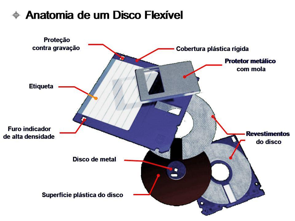 Anatomia de um Disco Flexível