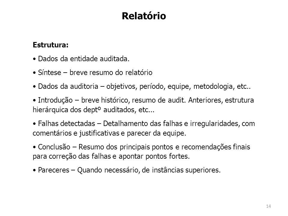 Relatório Estrutura: Dados da entidade auditada.