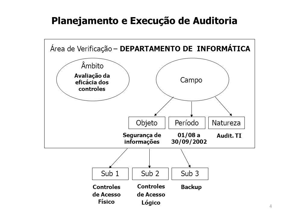 Planejamento e Execução de Auditoria