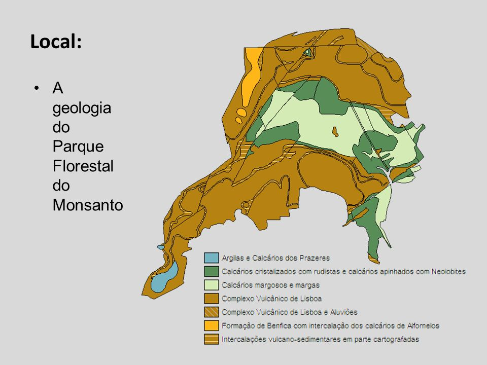 Local: A geologia do Parque Florestal do Monsanto