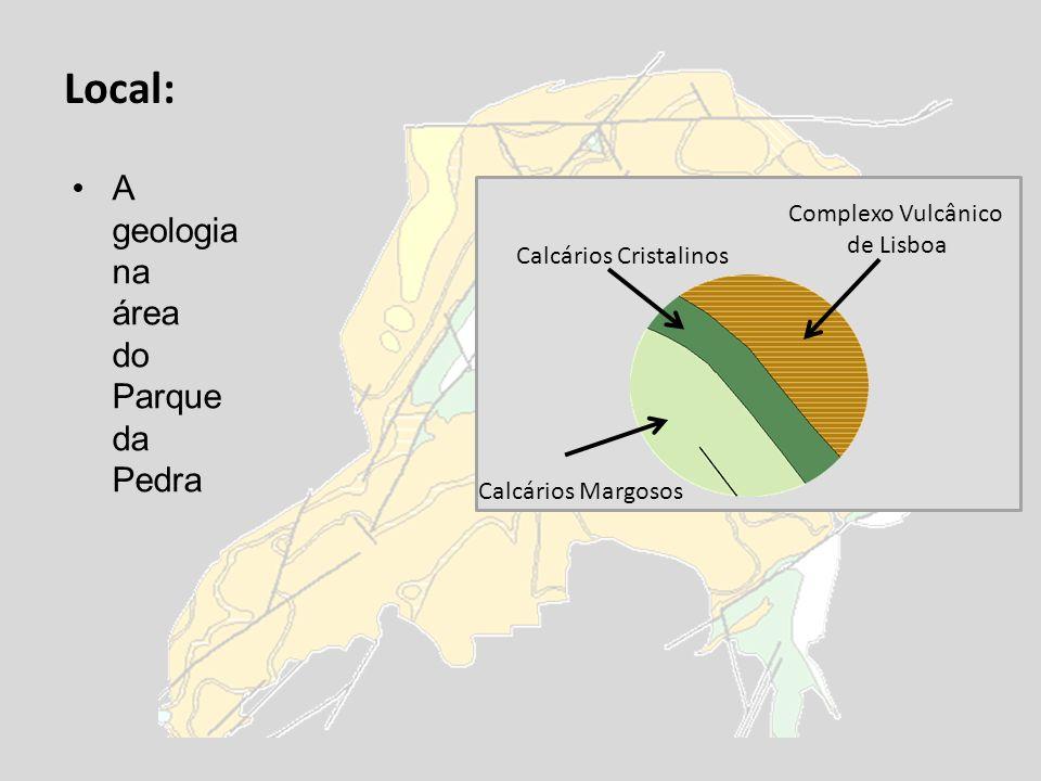 Local: A geologia na área do Parque da Pedra Complexo Vulcânico