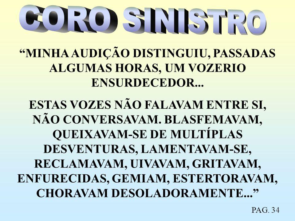 CORO SINISTRO MINHA AUDIÇÃO DISTINGUIU, PASSADAS ALGUMAS HORAS, UM VOZERIO ENSURDECEDOR...