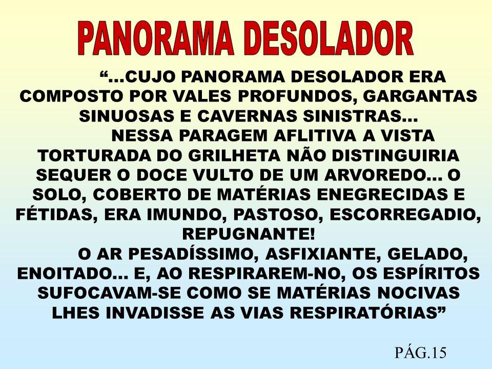 PANORAMA DESOLADOR ...CUJO PANORAMA DESOLADOR ERA