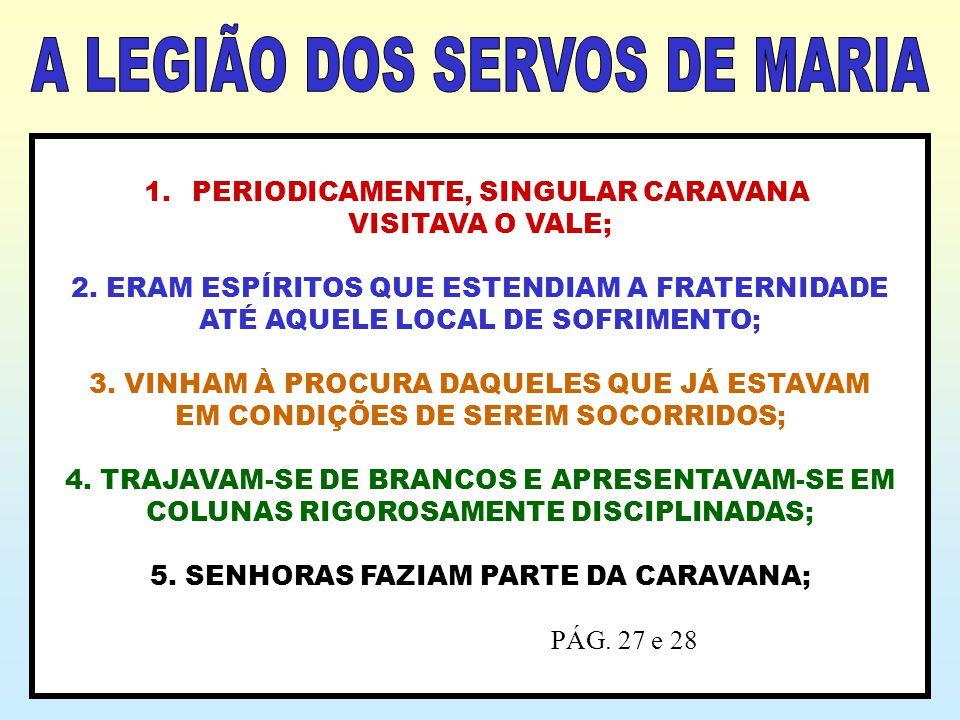 A LEGIÃO DOS SERVOS DE MARIA