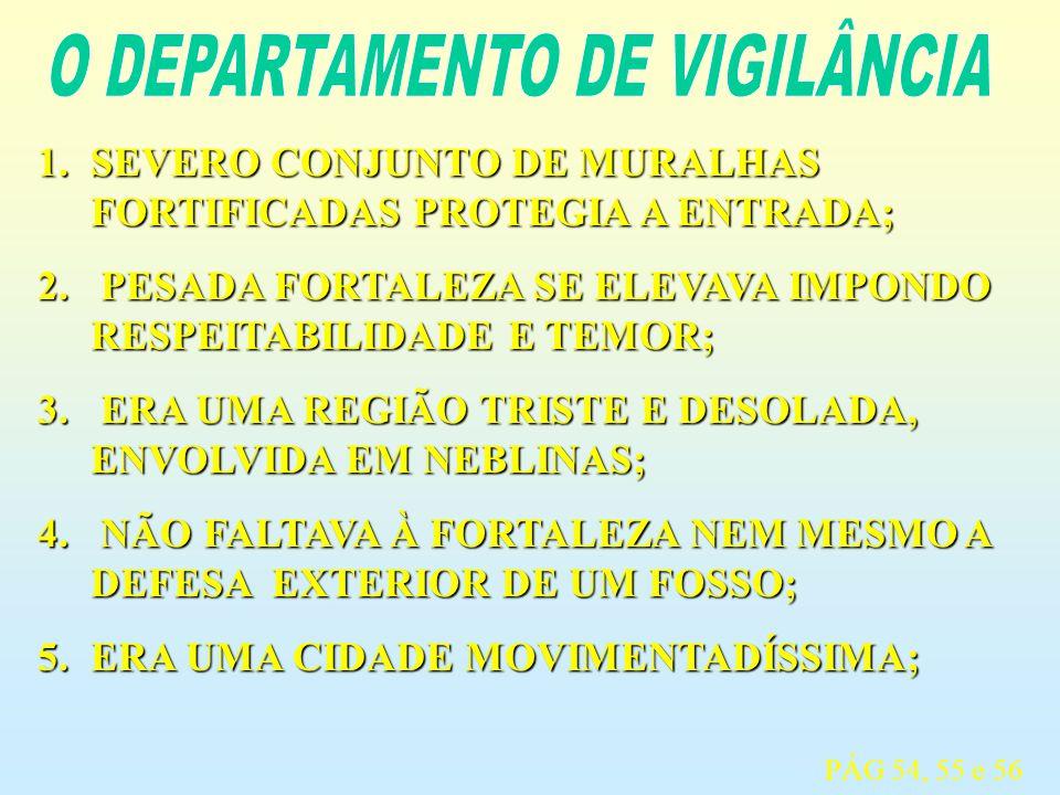 O DEPARTAMENTO DE VIGILÂNCIA