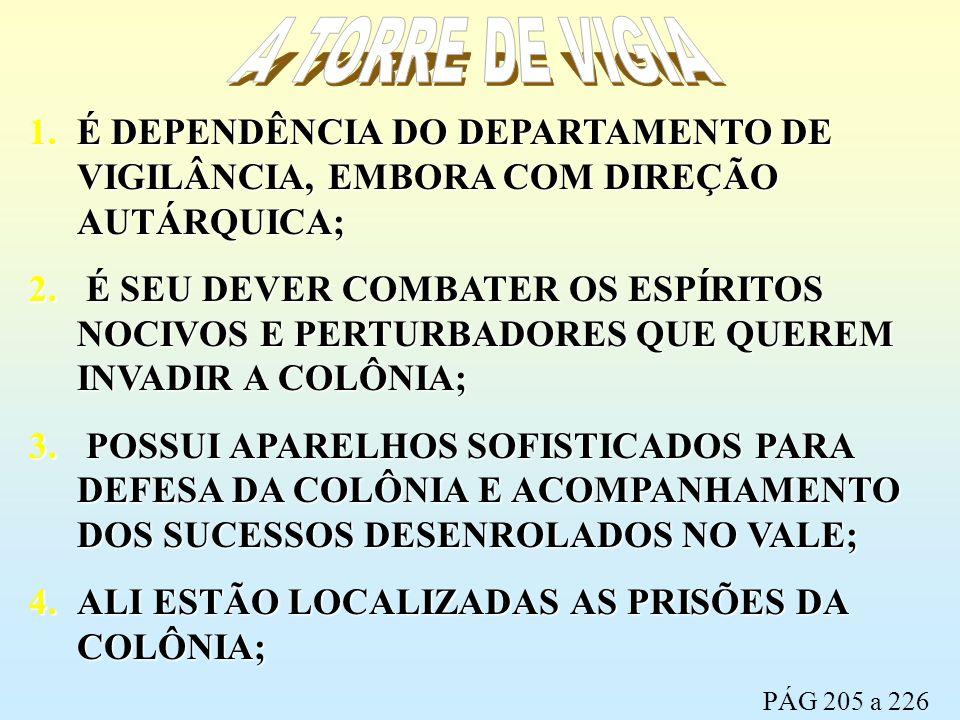 A TORRE DE VIGIA É DEPENDÊNCIA DO DEPARTAMENTO DE VIGILÂNCIA, EMBORA COM DIREÇÃO AUTÁRQUICA;