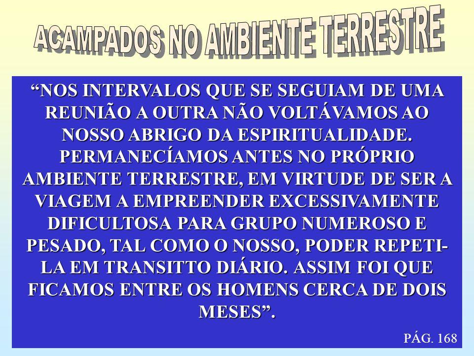 ACAMPADOS NO AMBIENTE TERRESTRE