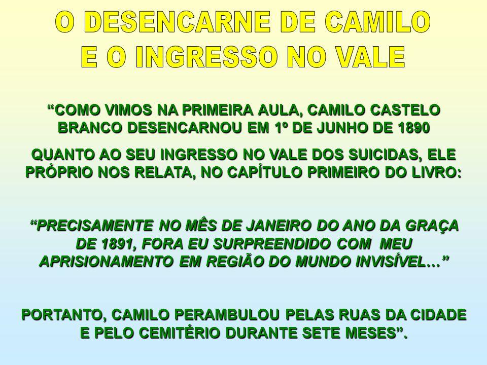 O DESENCARNE DE CAMILO E O INGRESSO NO VALE