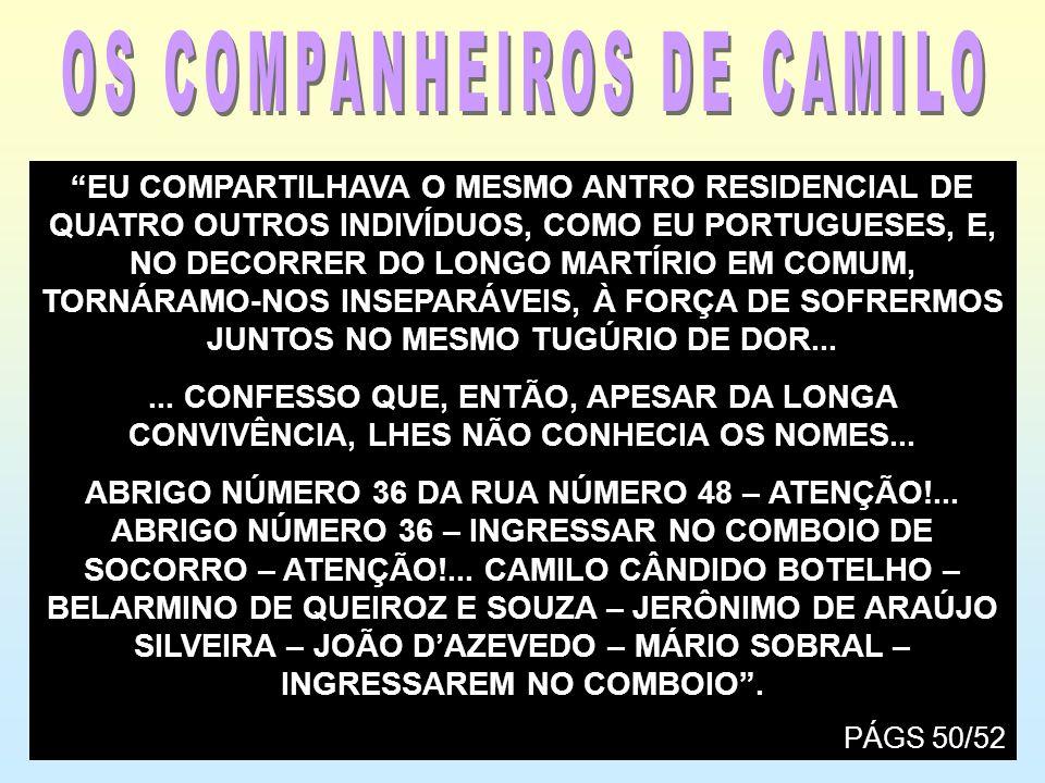 OS COMPANHEIROS DE CAMILO