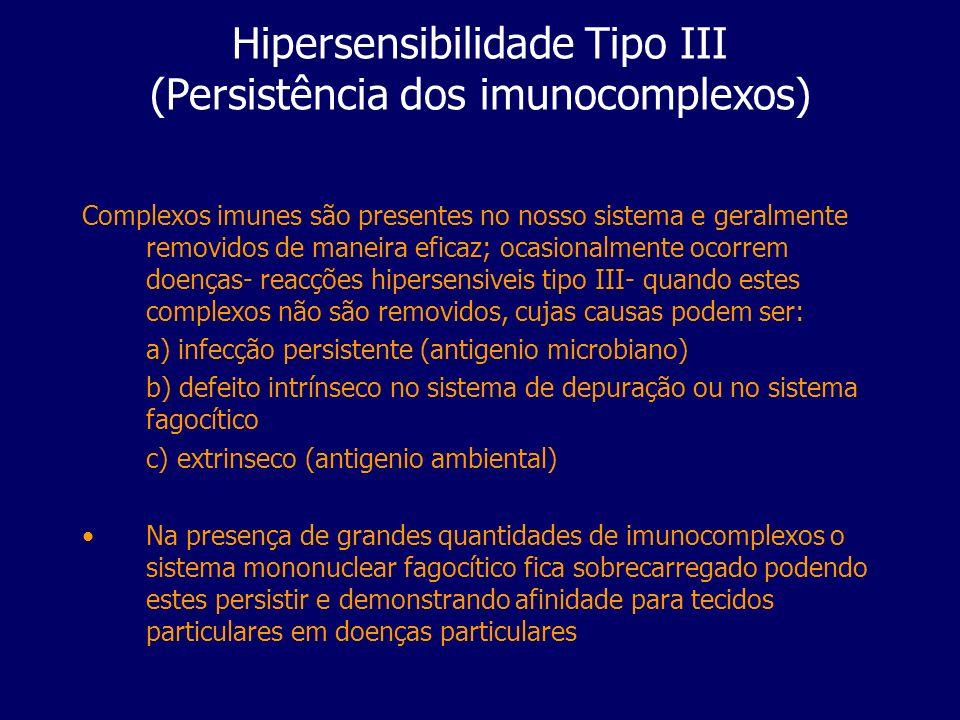 Hipersensibilidade Tipo III (Persistência dos imunocomplexos)