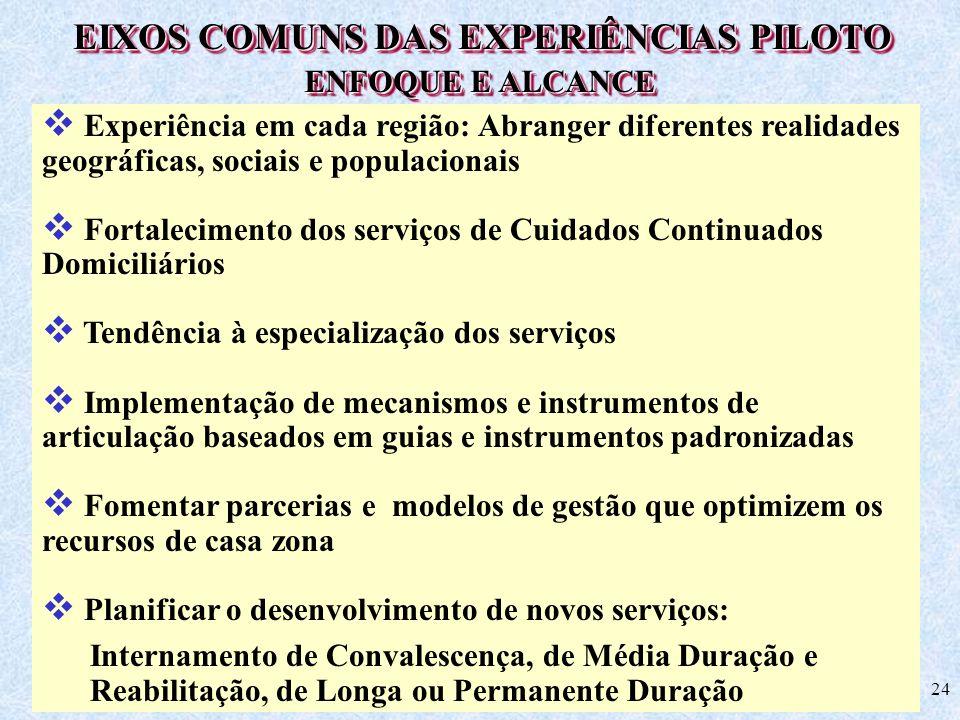 EIXOS COMUNS DAS EXPERIÊNCIAS PILOTO