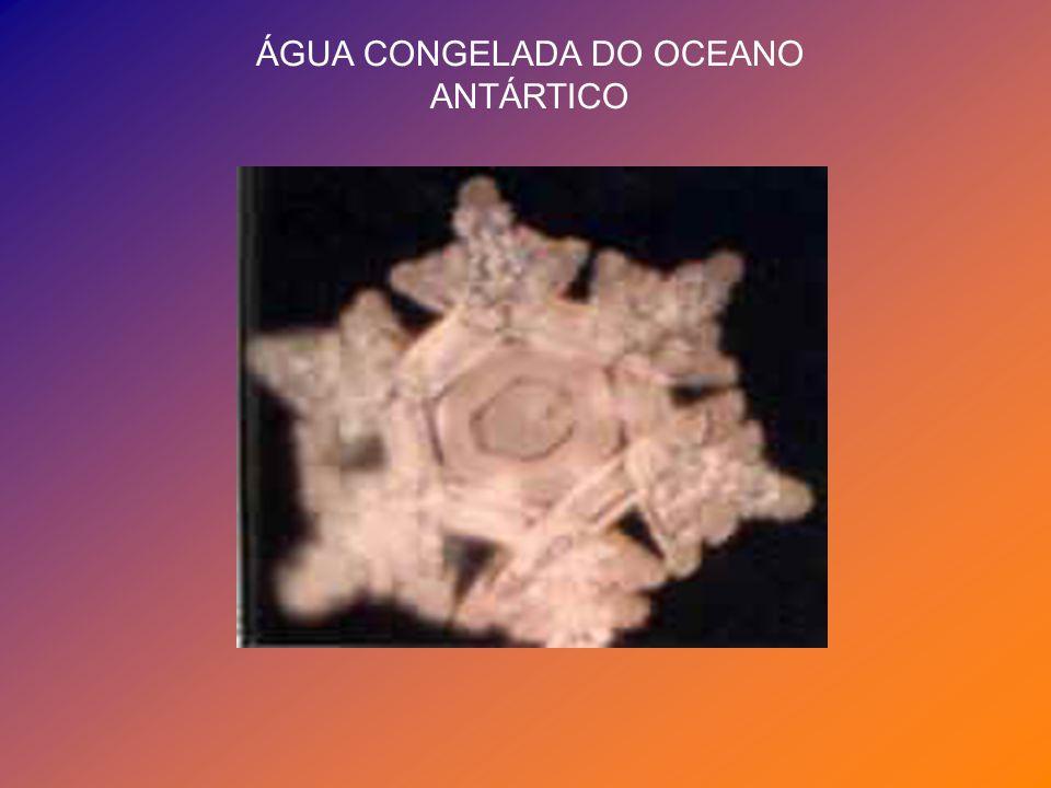 ÁGUA CONGELADA DO OCEANO ANTÁRTICO