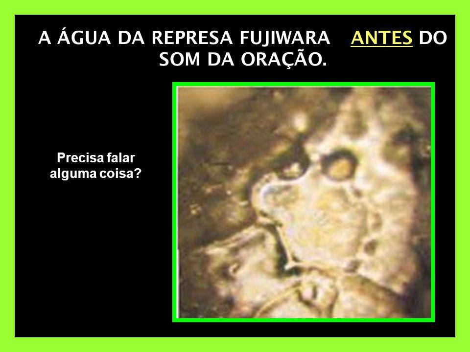 A ÁGUA DA REPRESA FUJIWARA ANTES DO SOM DA ORAÇÃO.