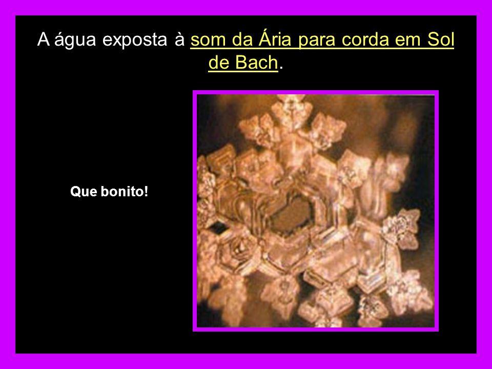 A água exposta à som da Ária para corda em Sol de Bach.