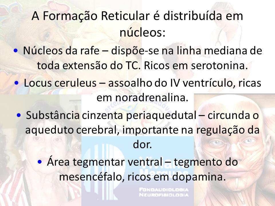 A Formação Reticular é distribuída em núcleos: