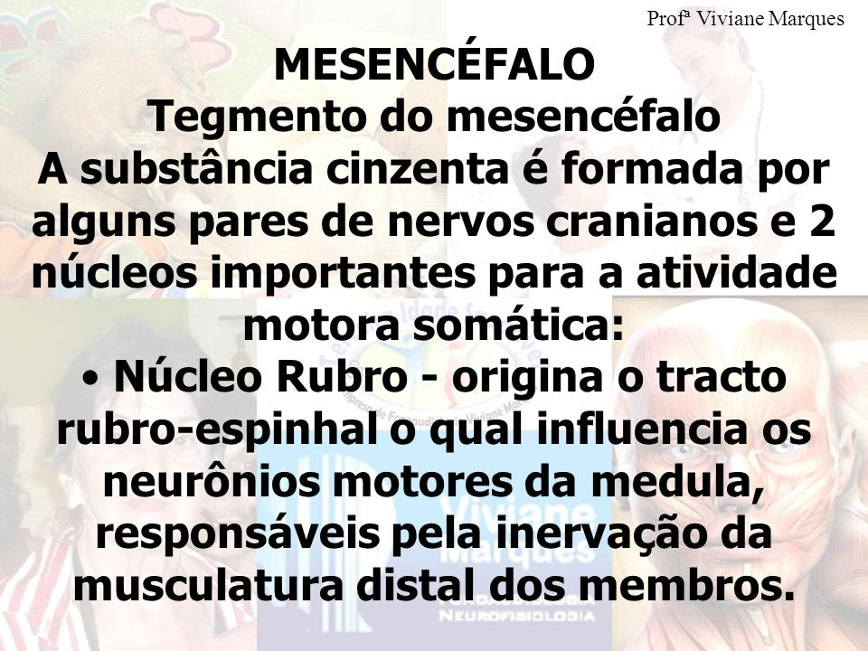 Tegmento do mesencéfalo