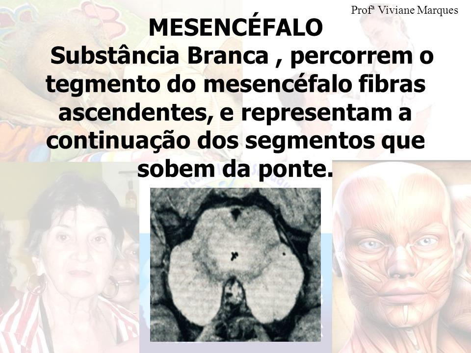 Profª Viviane Marques MESENCÉFALO.