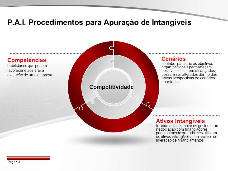 P.A.I. Procedimentos para Apuração de Intangíveis