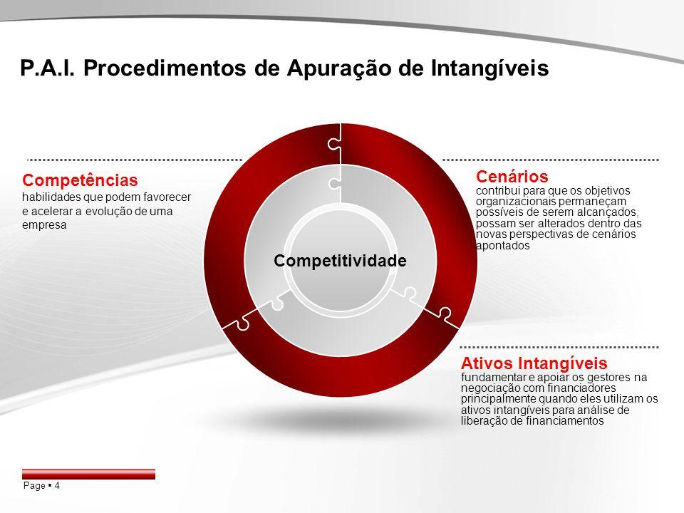 P.A.I. Procedimentos de Apuração de Intangíveis