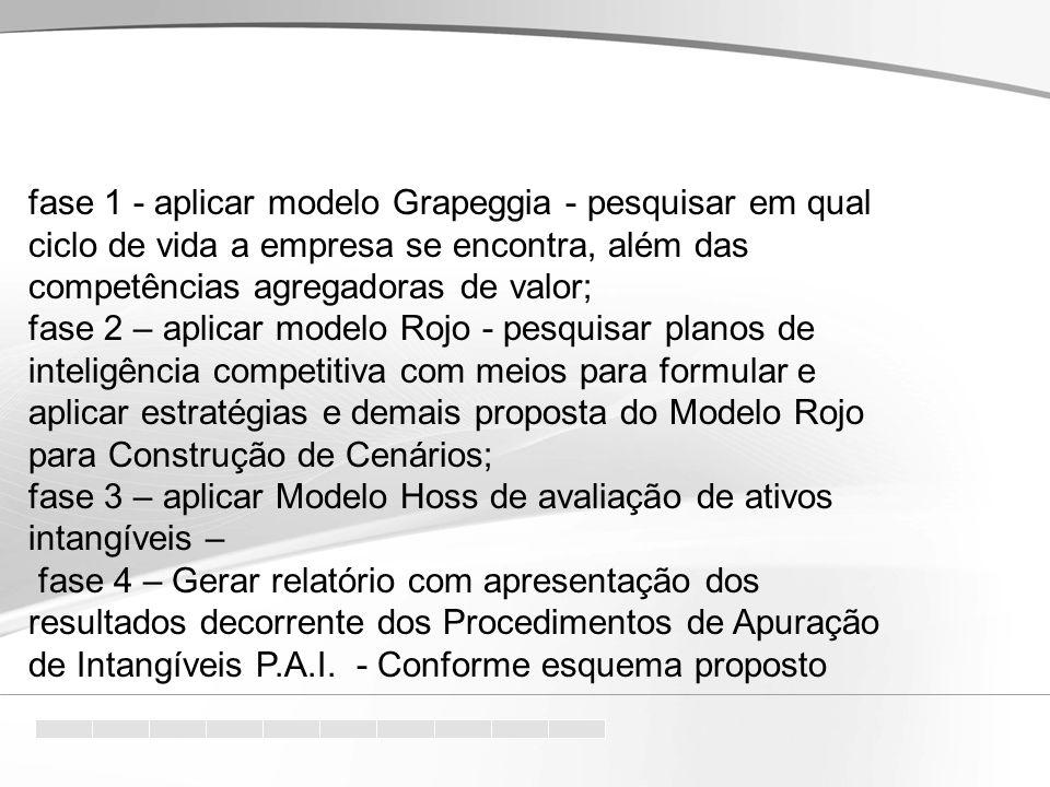 fase 1 - aplicar modelo Grapeggia - pesquisar em qual ciclo de vida a empresa se encontra, além das competências agregadoras de valor;