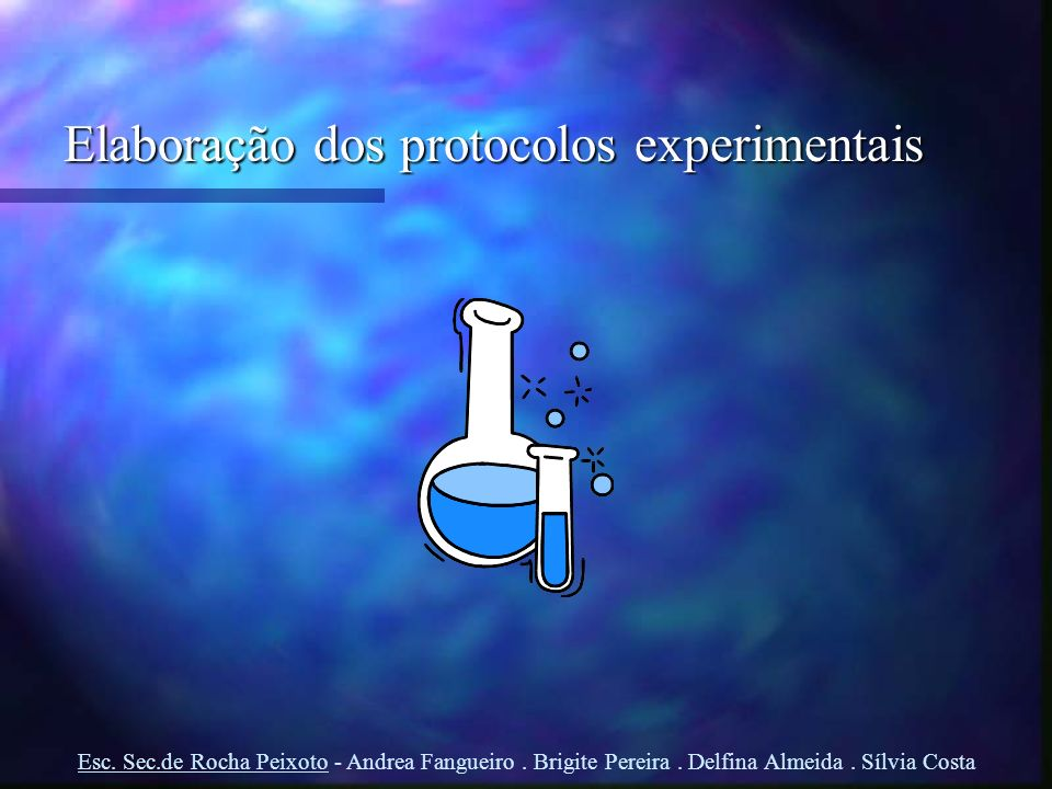 Elaboração dos protocolos experimentais