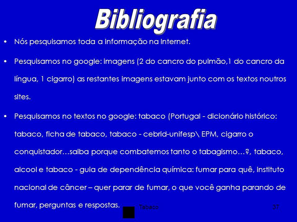Bibliografia Nós pesquisamos toda a informação na Internet.