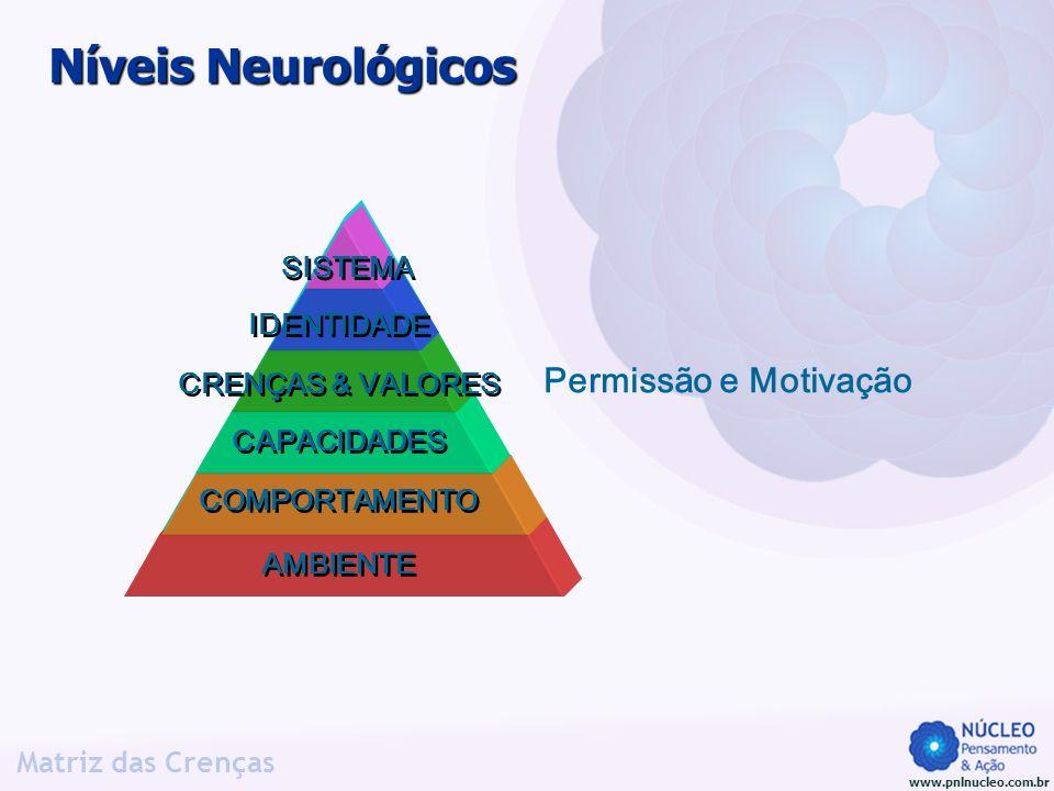 Níveis Neurológicos Permissão e Motivação SISTEMA IDENTIDADE