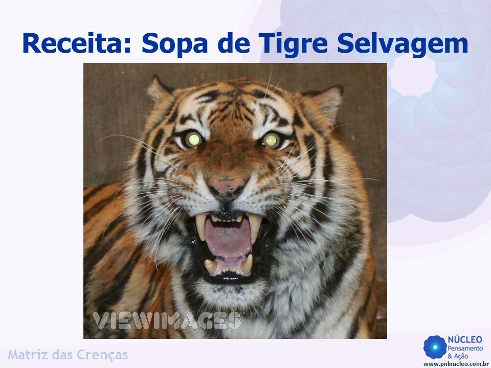 Receita: Sopa de Tigre Selvagem