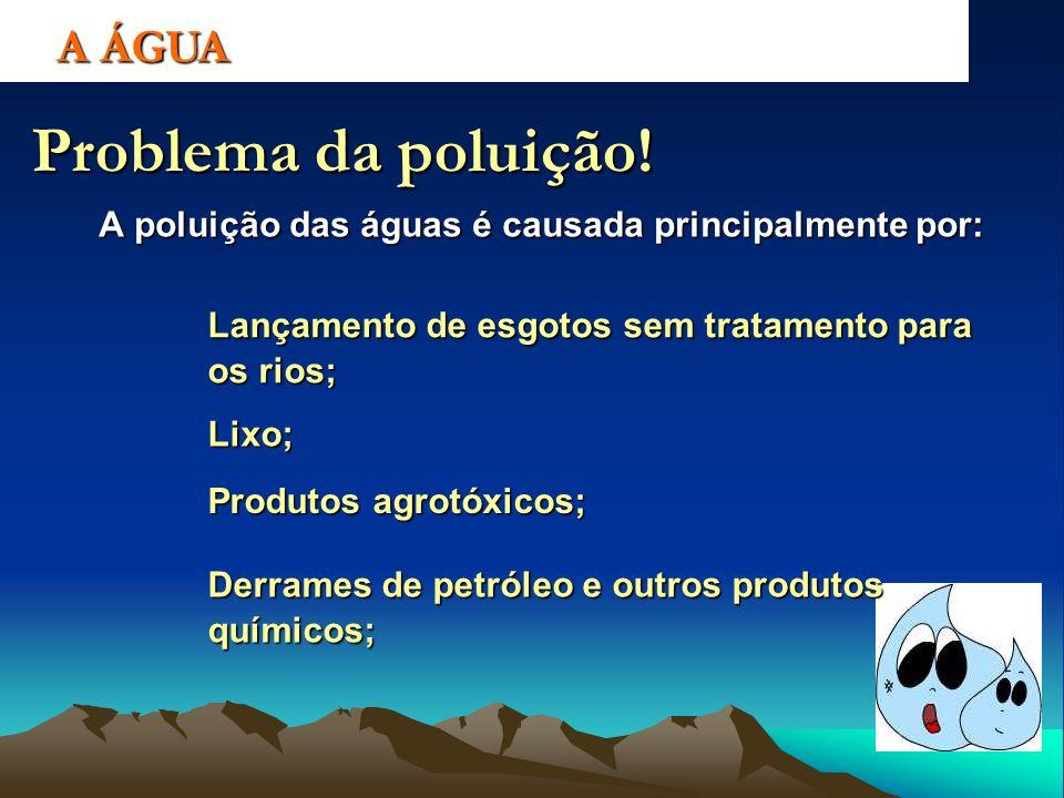 A poluição das águas é causada principalmente por: