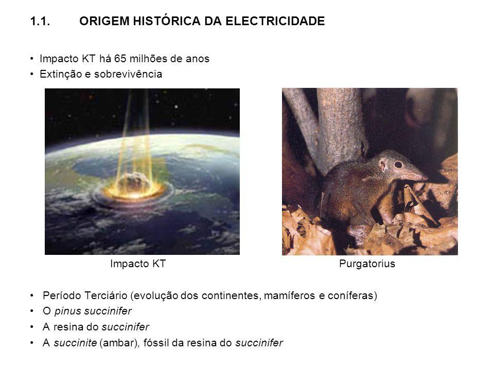 1.1. ORIGEM HISTÓRICA DA ELECTRICIDADE