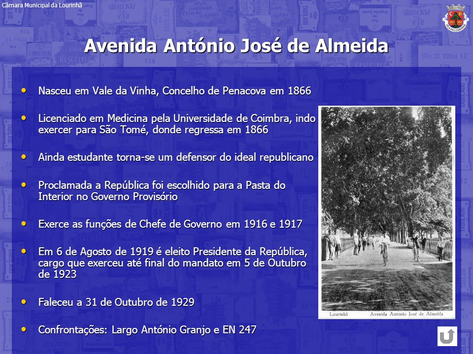 Avenida António José de Almeida