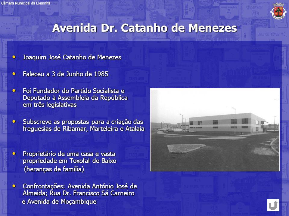 Avenida Dr. Catanho de Menezes