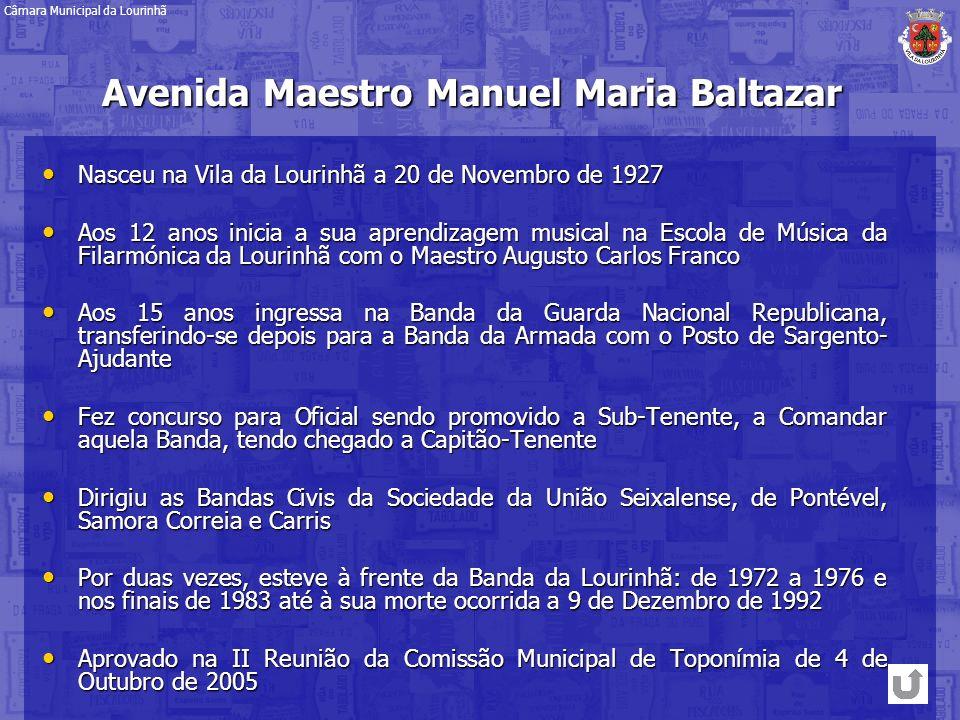 Avenida Maestro Manuel Maria Baltazar
