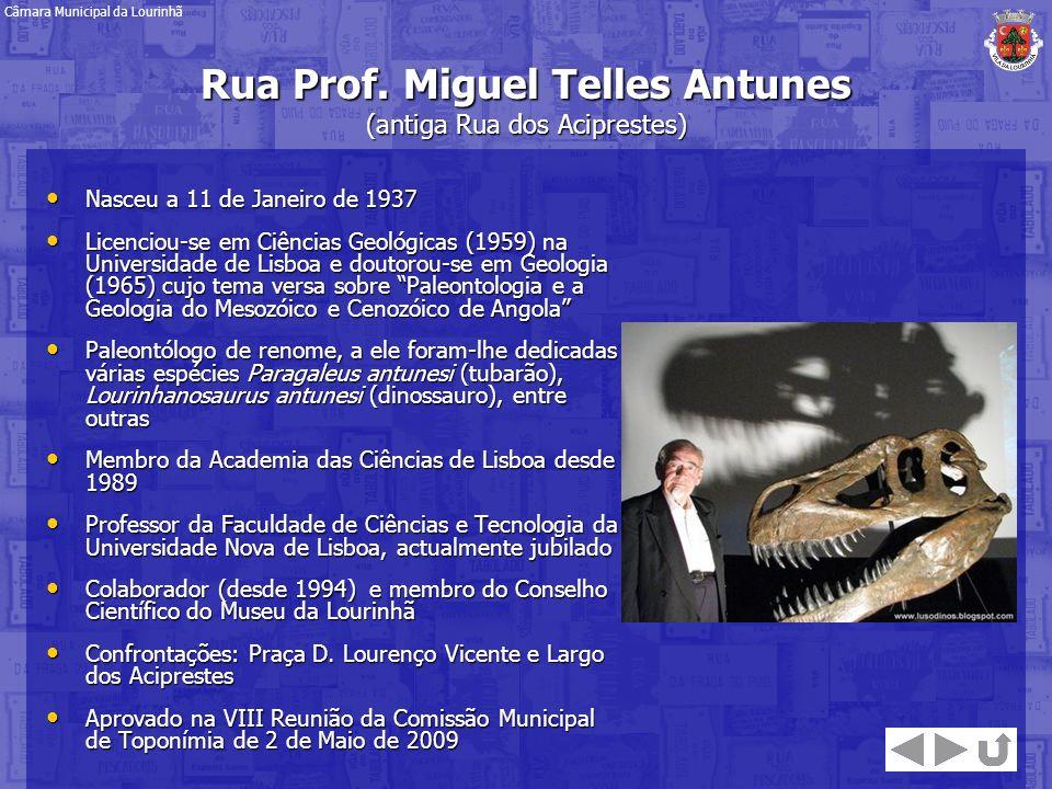 Rua Prof. Miguel Telles Antunes (antiga Rua dos Aciprestes)