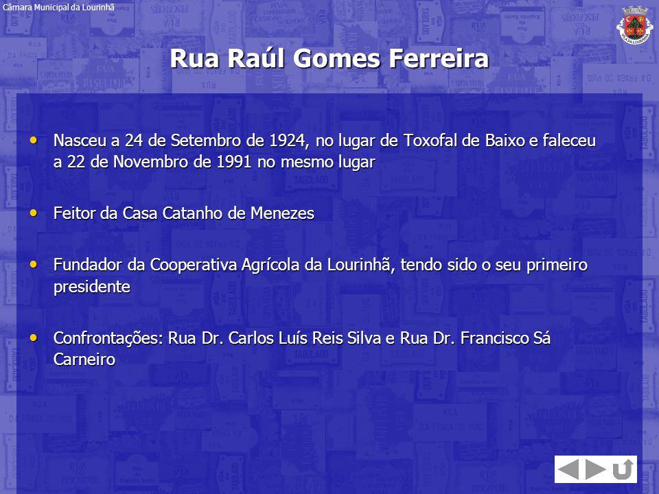 Rua Raúl Gomes Ferreira