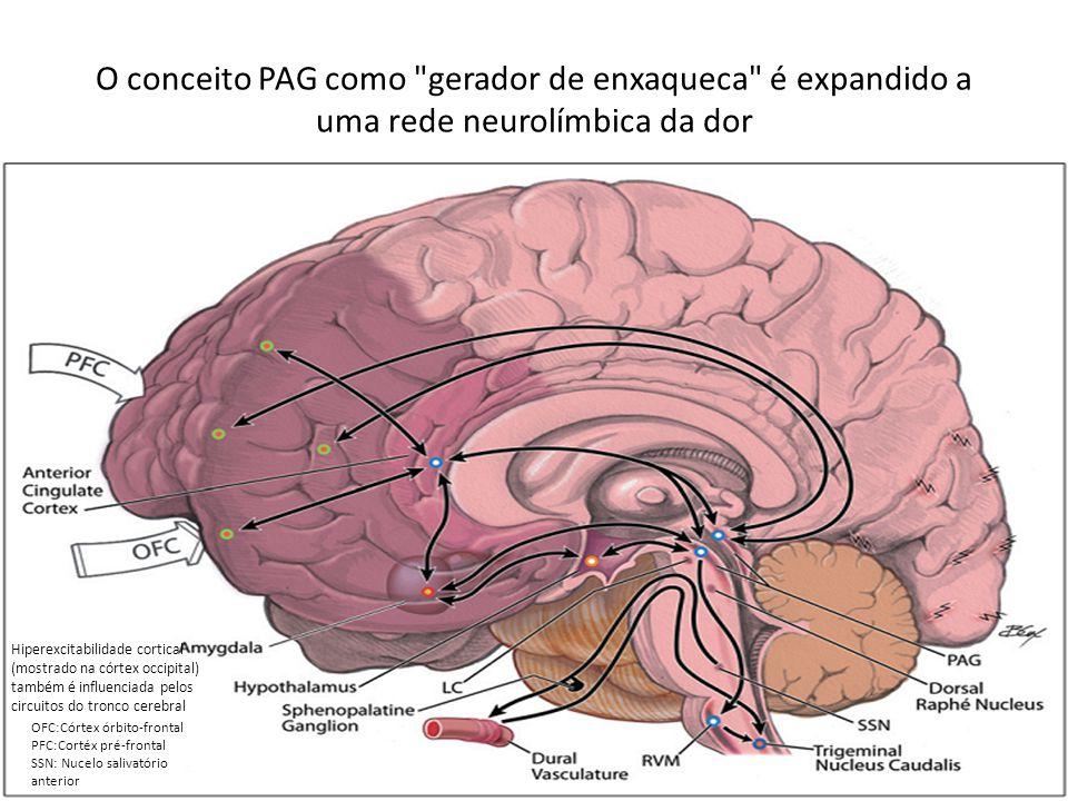 O conceito PAG como gerador de enxaqueca é expandido a uma rede neurolímbica da dor