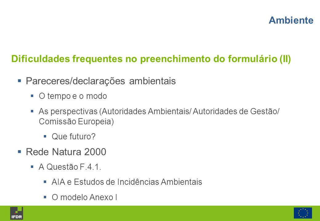 Dificuldades frequentes no preenchimento do formulário (II)