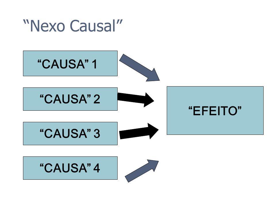 Nexo Causal CAUSA 1 CAUSA 2 EFEITO CAUSA 3 CAUSA 4