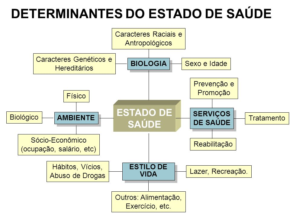 DETERMINANTES DO ESTADO DE SAÚDE
