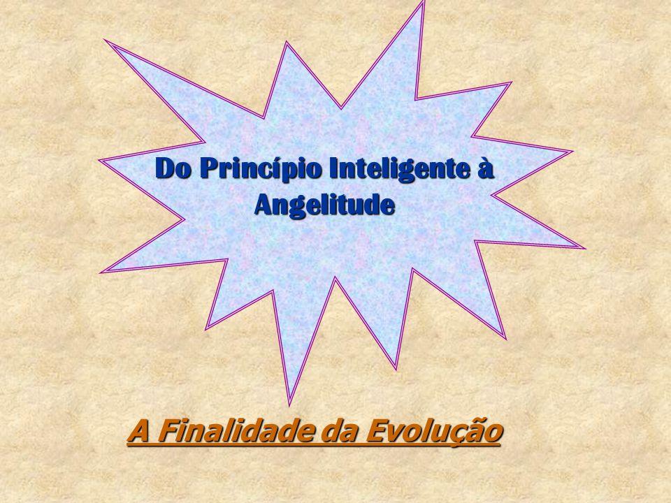 Do Princípio Inteligente à Angelitude