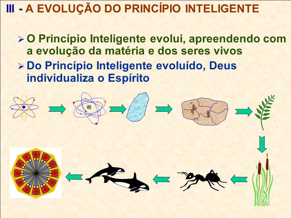 III - A EVOLUÇÃO DO PRINCÍPIO INTELIGENTE