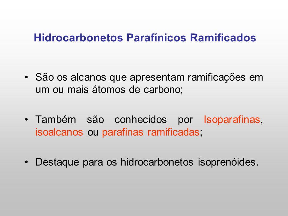 Hidrocarbonetos Parafínicos Ramificados