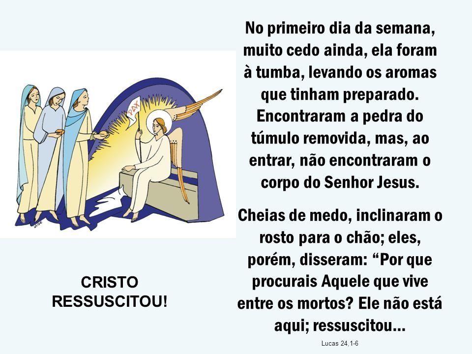 No primeiro dia da semana, muito cedo ainda, ela foram à tumba, levando os aromas que tinham preparado. Encontraram a pedra do túmulo removida, mas, ao entrar, não encontraram o corpo do Senhor Jesus.