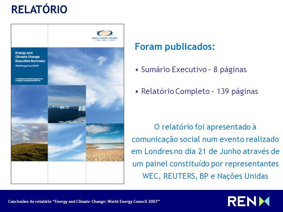 RELATÓRIO Foram publicados: Sumário Executivo – 8 páginas