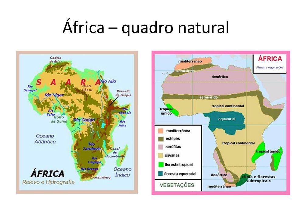 África – quadro natural