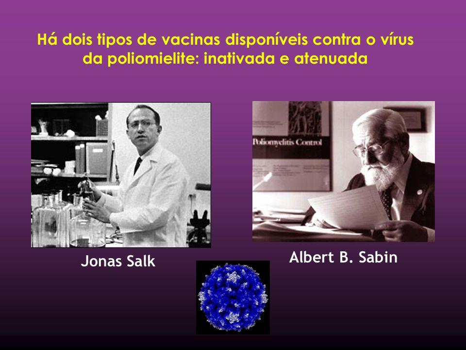 Há dois tipos de vacinas disponíveis contra o vírus da poliomielite: inativada e atenuada